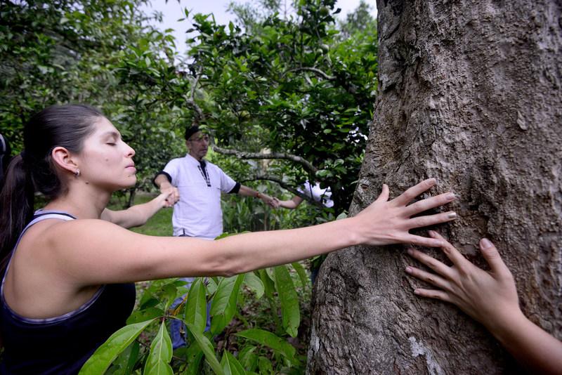 Que ce soit pour essayer la sylvothérapie, le « Earthing », les retraites de silence ou les sources minérales thermales, les voyageurs peuvent tout trouver au Costa Rica!