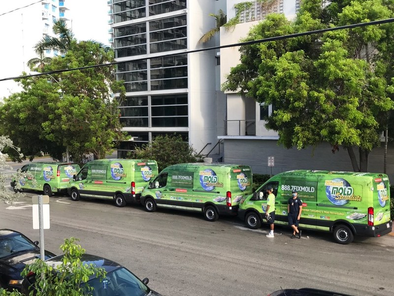 Since Hurricane Irma, Miami Mold Specialist has served well over 1,000 properties in the greater Miami area