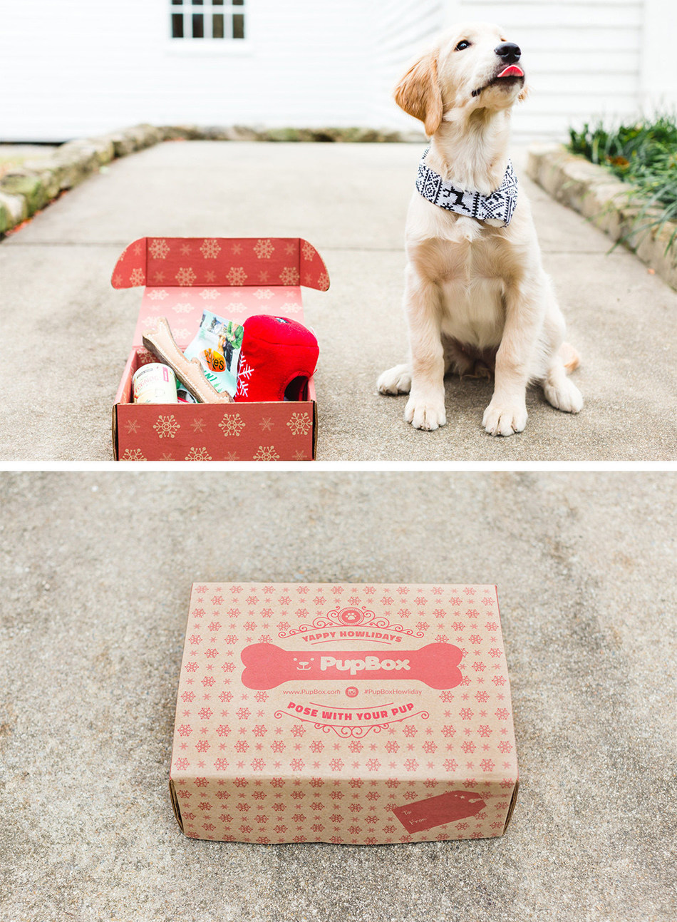 Petco and PupBox have launched the first-ever PupBox Holiday Box, a festive bundle of toys, treats and holiday training tips, perfect for any pup or pet parent on your list.
