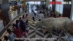 The Augmented Reality experience at the iconic Metro INOX theatre (PRNewsfoto/INOX Leisure Ltd.)