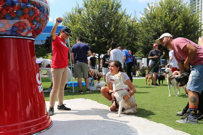 Attendees enjoying the life-size tennis ball dispenser at one of the #GiveAFetch events