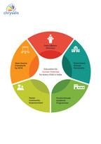 Chrysalis New Education System Roadmap (PRNewsfoto/Chrysalis)