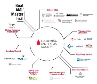 The Leukemia & Lymphoma Society Beat AML Master Trial