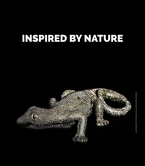 NP - inspired by nature photocredits copyright 2017 www.oliver-thom.de (PRNewsfoto/Nanopool GmbH)