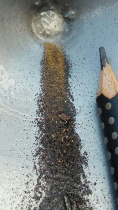 Figure 7 (a) : Panned gold concentrate from 8kg channel sample in trench TR_CC_031. (CNW Group/Meridian Mining S.E.)