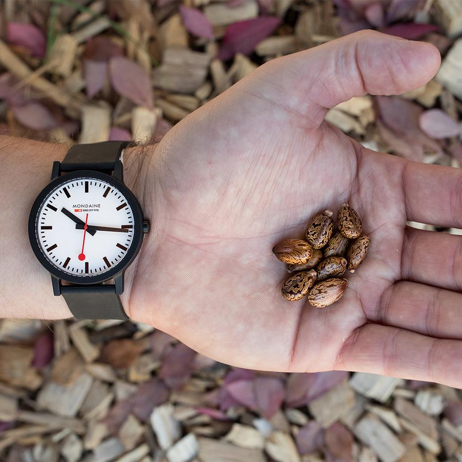 Mondaine essence watch and castor bean (PRNewsfoto/Mondaine Watch Ltd.)