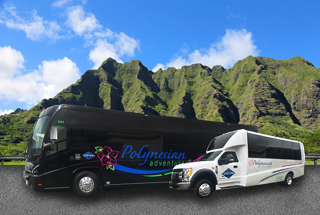 New motor coaches and mini buses with new branding.