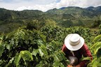 Nespresso announces investment in post-conflict Colombian coffee