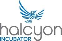 Halcyon Incubator. (PRNewsfoto/Halcyon)