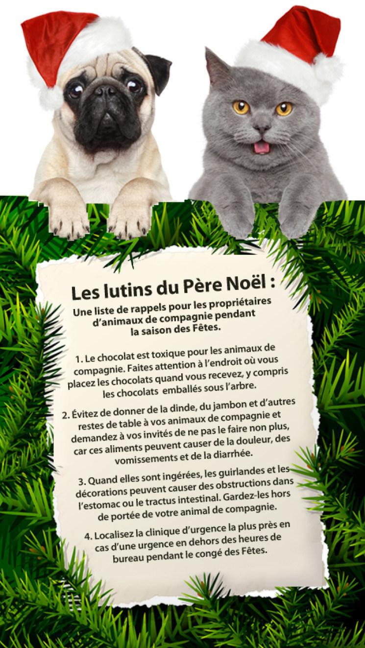 La période des Fêtes peut être difficile pour les animaux de compagnie (Groupe CNW/Institut canadien de la santé animale)