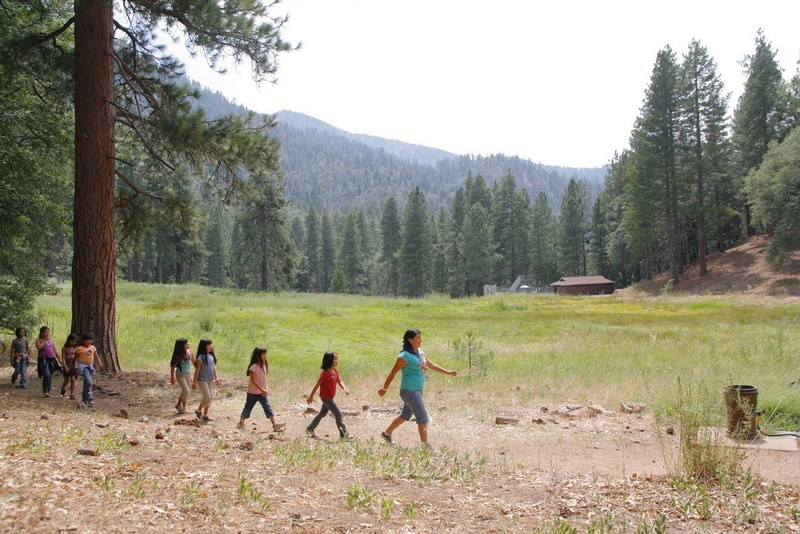 Campers exploring nature at YMCA Camp Round Meadow