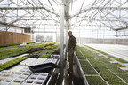 Good Water Farms Expands Microgreens Availability via Whole Foods, a Cookbook and CSA-style Delivery