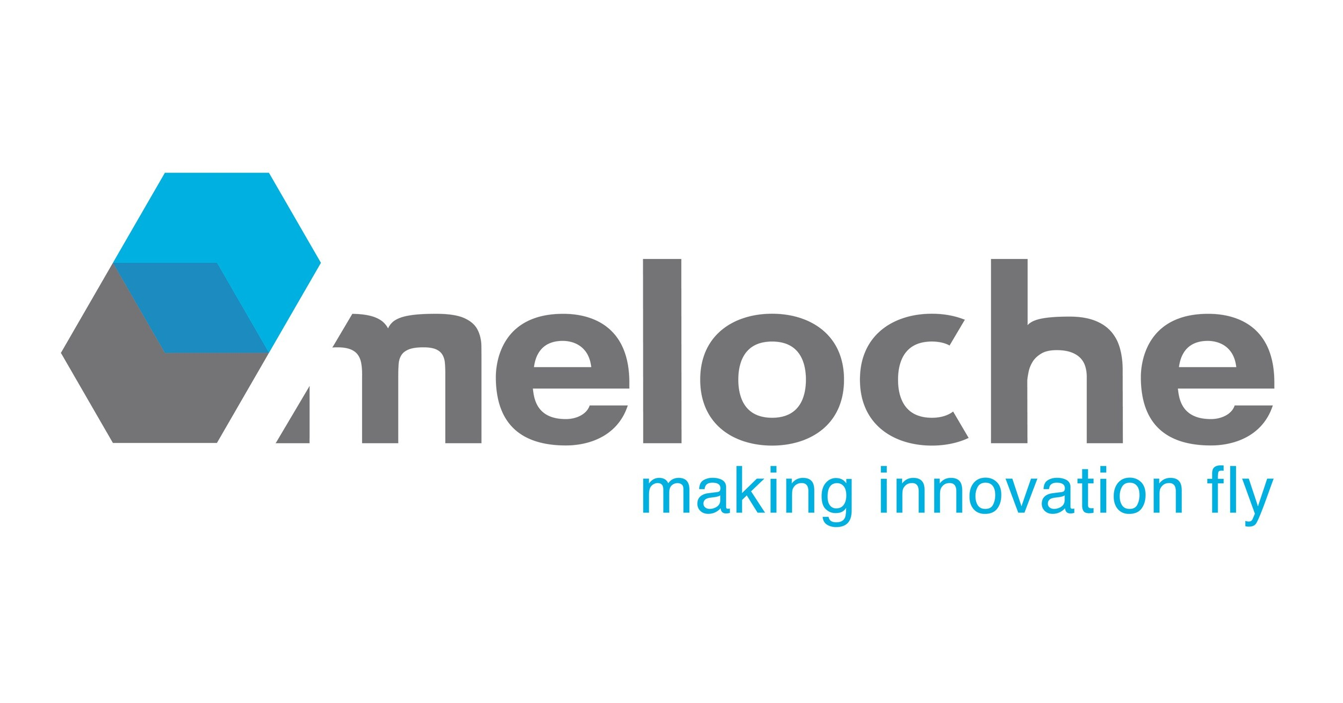 groupe meloche invests 17 5 million to continue its growth fonds de solidarit ftq invests 7. Black Bedroom Furniture Sets. Home Design Ideas