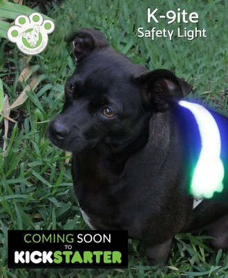 K-9ite Safety Light - World's First LED Safety Belt for Dogs