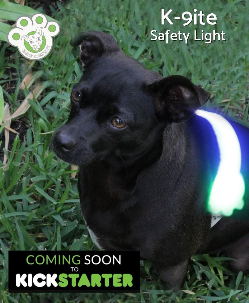 K-9ite Safety Light – World's First LED Safety Belt for Dogs