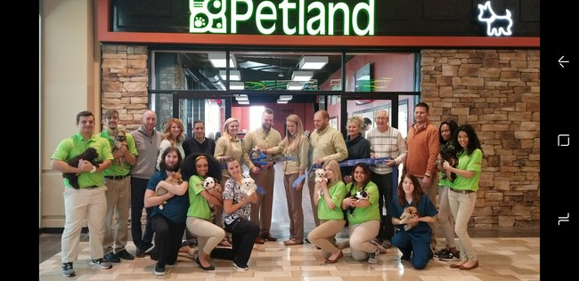 (PRNewsfoto/Petland Mall of Georgia)