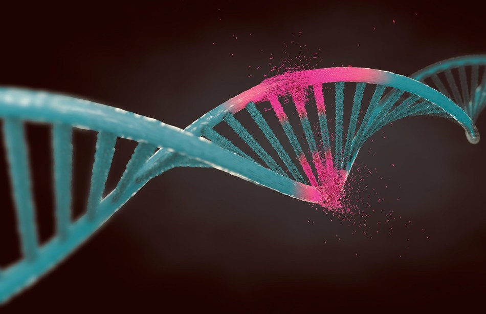 Merck's genome-editing technology, which allows the precise modification of chromosomes in living cells, is advancing treatment options for some of the toughest medical conditions faced today