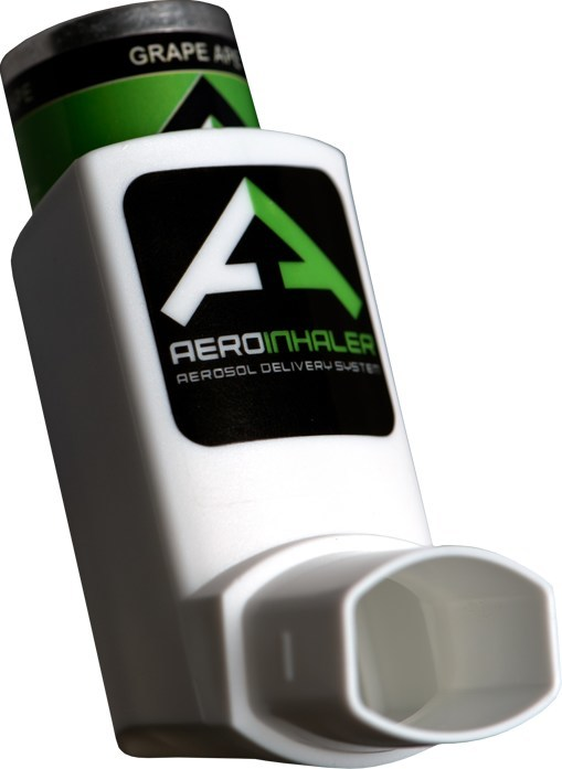 The world's first ever THC & live resin terpene-infused aerosol inhaler has is the perfect for those looking for a soothing buzz without smoke.  The AeroInhaler is the most discrete cannabis consumption product on the market as it comes with no smoke, no scent, and no problems! (PRNewsfoto/Revered, Inc.)