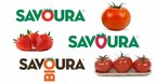 Cannabis, tomates ou fraises? Un choix facile pour Savoura! (Groupe CNW/Agro Québec)