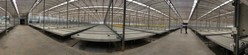Figure 2: Panoramic shot of inside one of the 3 massive interior modules within Block D glasshouse at Dube TradePort AgriZone. (CNW Group/LGC Capital Ltd)