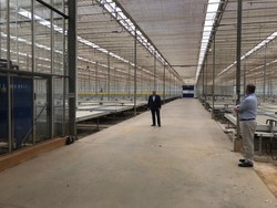 Figure 3: LGC Capital's CEO John Mc Mullen in the first of three interior modules in Block D Glasshouse at Dube TradePort AgriZone. (CNW Group/LGC Capital Ltd)