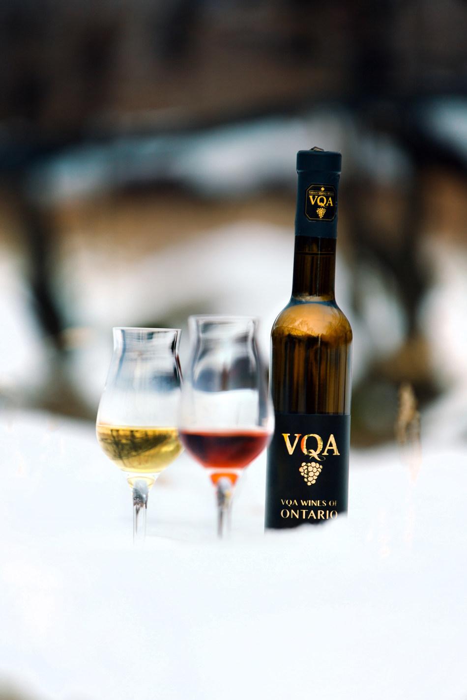 VQA Wines of Ontario Icewine in the Vineyard (CNW Group/Wine Marketing Association of Ontario)