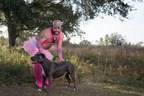 Veterans Take It All Off to Save Death Row Pit Bulls