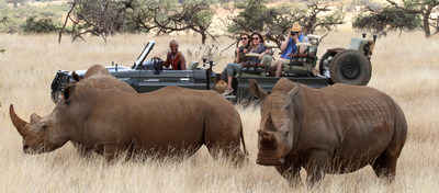Game census safari at Lewa-Borana Wildlife Conservancy in Northern Kenya.