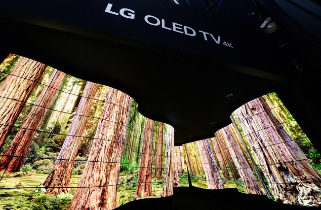 "A unique, immersive installation that leverages flexible, eye-popping commercial display technology from LG Electronics (LG), is wowing attendees at CES® 2018 here this week. The winding 92-foot-long ""LG OLED Canyon"" features 246 LG Open Frame OLED displays, in concave and convex configurations, giving tens of thousands of visitors a one-of-a-kind experience of natural wonders."