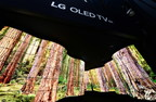'LG OLED Canyon' Wows CES Attendees