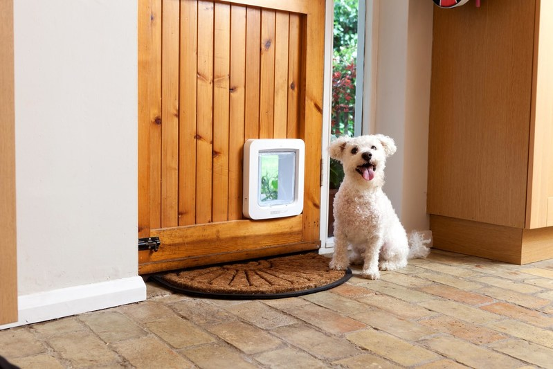Sure Petcare Microchip Pet Door Connect The World S First