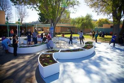 Kimbal Musk's non-profit organization Big Green will build outdoor Learning Garden classrooms in 100 schools across Detroit