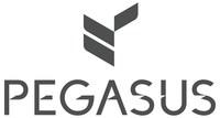 Pegasus Solutions (PRNewsfoto/Pegasus Solutions)