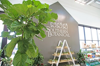 Southern Botanical at TreeHouse's Plano Store