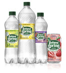 Nestlé Waters North America Prepares to Unleash the Previously Untapped Potential of its Regional Spring Water Brands into the Sparkling Category