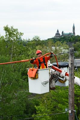 Hydro Ottawa employee (CNW Group/Hydro Ottawa Holding Inc.)