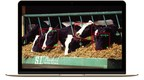 Cainthus uses breakthrough predictive imaging to monitor the health and wellbeing of livestock.