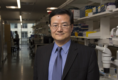 Professor Bin He is the new Department Head of Biomedical Engineering at Carnegie Mellon University's College of Engineering.