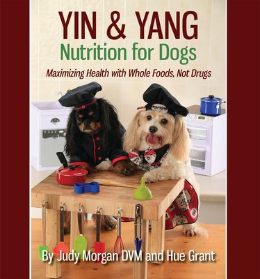Are You Feeding Your Dog Wrong for His Personality and Health?