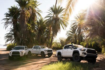 La emocionante Serie TRD Pro de Toyota regresa para su próxima generación de dominio del terreno no asfaltado. Para 2019, la Tundra, el 4Runner y la Tacoma traerán amortiguadores Fox y una serie de impresionantes equipos para caminos de tierra diseñados y afinados por los ingenieros de Toyota Racing Development (TRD).