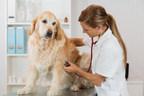 Healthy Paws Pet Insurance Announces Good Deeds for 2017 - 2018