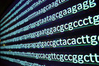 Accelerated Cure Project Launches Collaborative Research Program with Regeneron Genetics Center to Sequence DNA of Multiple Sclerosis Patients