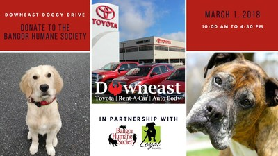 Bangor-area residents can donate dog toys, food and more to the Bangor Humane Society shelter on March 1 during the Downeast Doggy Drive at Downeast Toyota and have fun with furry family members in the process.