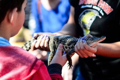 """In New Braunfels, enjoy some """"Animal Encounters"""" up close and personal, at the Animal World & Snake Farm Zoo, let teens try """"caving"""" at Natural Bridge Caverns 230 feet below the surface, zip line, learn to wakeboard or try the mining sluice for a great Spring Break!"""