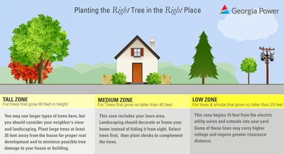 Plant the right tree in the right place this spring