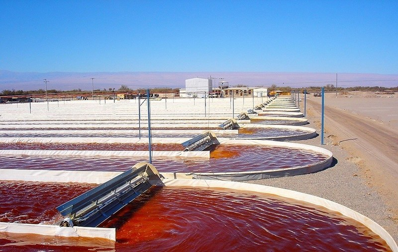 Atacama Bio has been producing natural astaxanthin derived from Haematococcus pluvialis since 2003 in the Atacama desert in Chile on its 250-acre facility using closed and open photo-bioreactors.