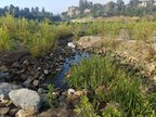 Big Canyon Creek Restoration Improves Water Quality, Wins ACEC Award in California