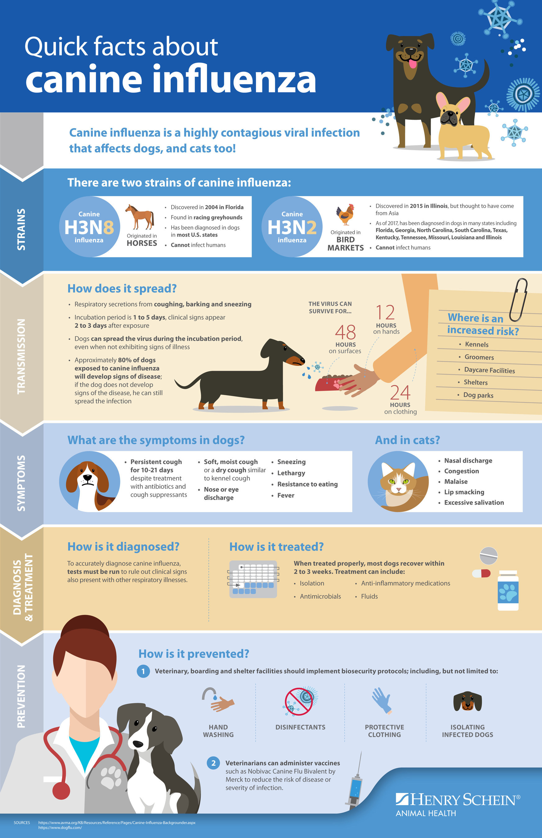 Henry Schein Animal Health's web-based Canine Influenza Resource Center helps raise awareness of the disease and promotes prevention amid outbreaks.