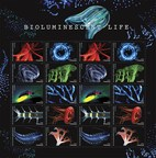 Dazzling Bioluminescent Life Forever Stamps Come to Light Today