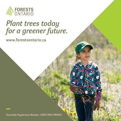 Starting February 26th, the public can support Forests Ontario by making a donation at any of the more than 650 LCBO stores throughout Ontario. (CNW Group/Forests Ontario)